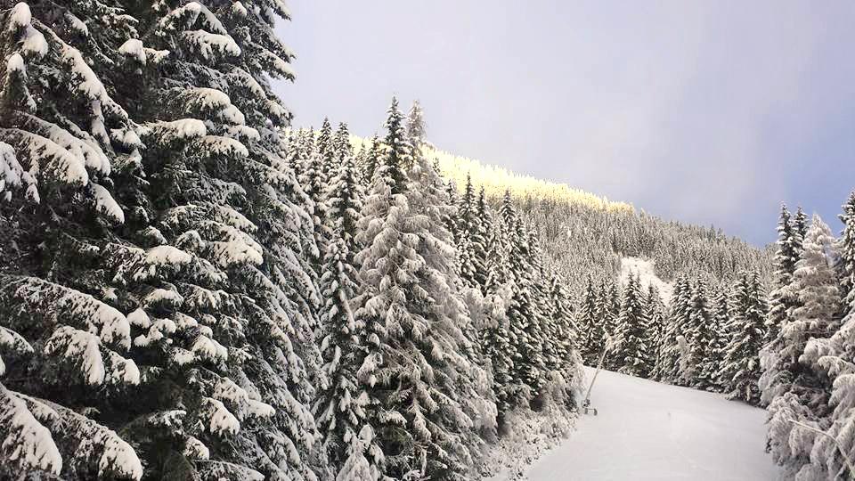 © Riesneralm - Endlich Winter