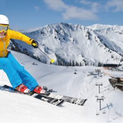 © Ski Riesneralm - Schneebären Card