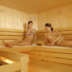 Hotel Berghof - Riesneralm - Wellnessbereich