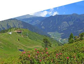 Sommer - Wandern Riesneralm - Donnersbachwald