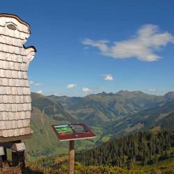 Riesneralm - Bergbahnen - Sommerurlaub - tierHOLZpark