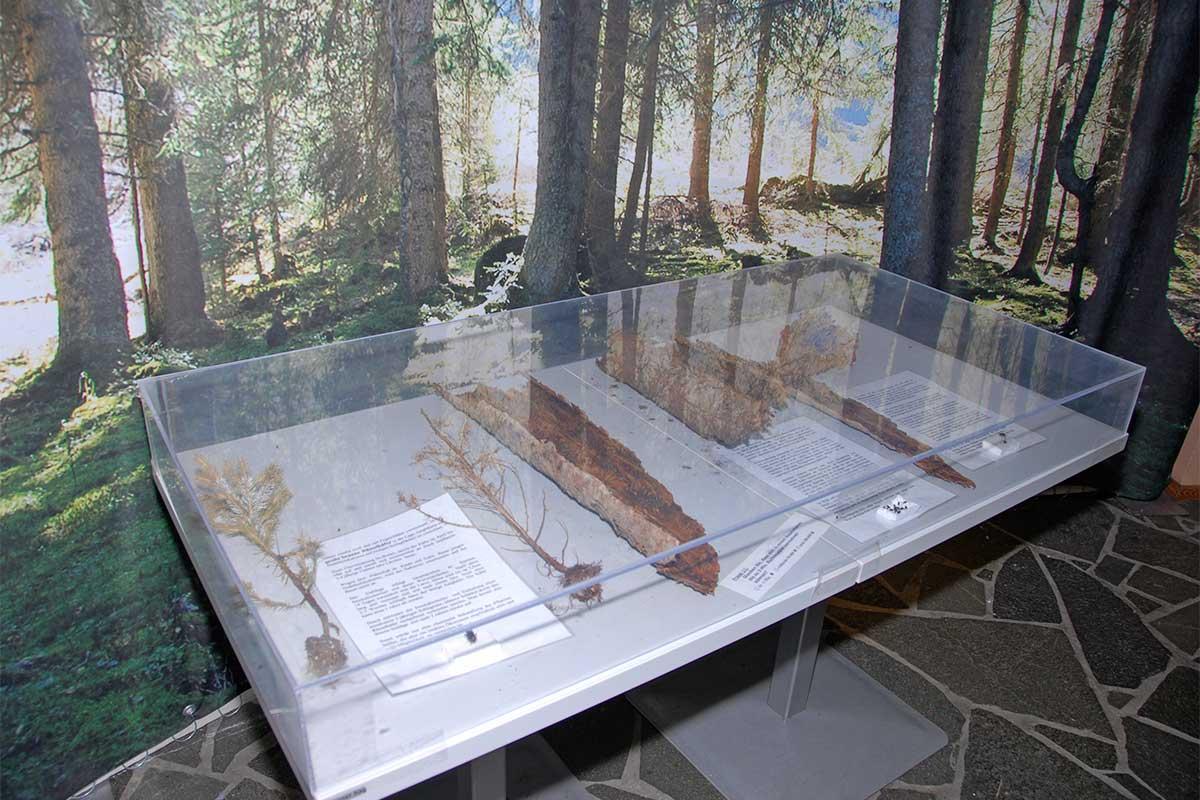 Bergbahnen Riesneralm - Sommer - Universum-Ausstellung