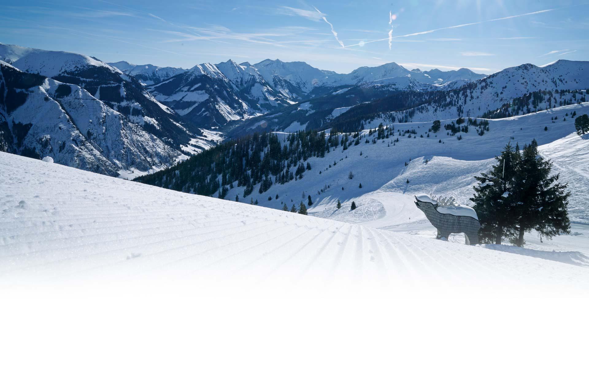 riesneralm-skigebiet-steiermark-12