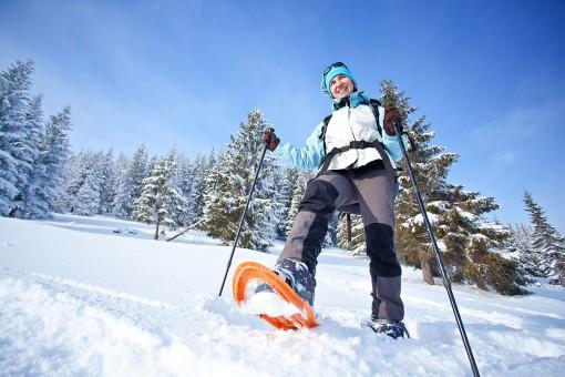 Schneeschuhwandern - Riesneralm - Donnersbachwald