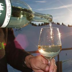 Skihütte Hochsitz mit Sonnenterrasse, Riesneralm